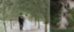 Bride groom avenue of trees