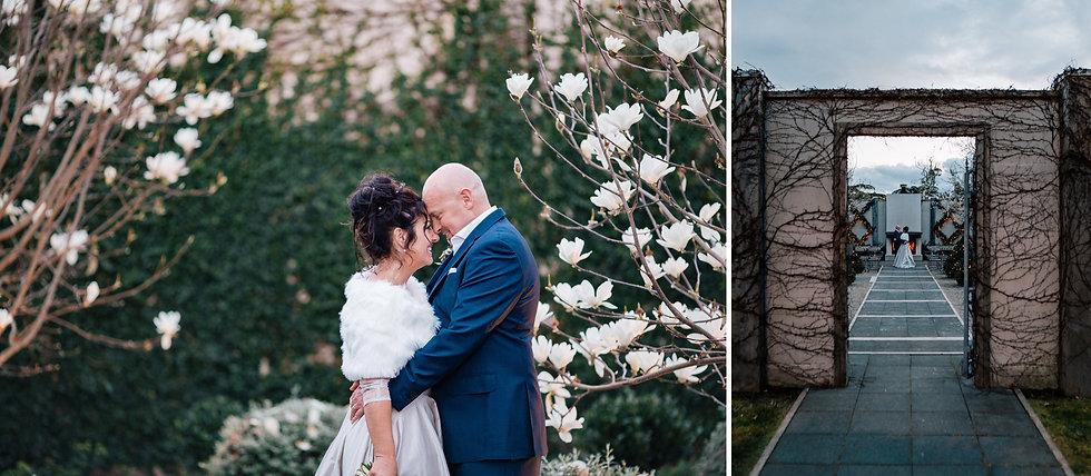 bride groom denudata magnolias