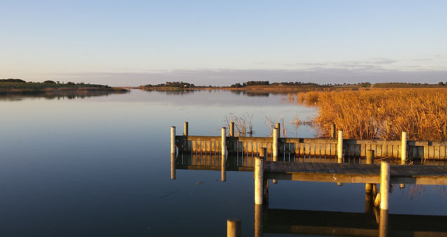 Clayton Bay - Lake Alexandrina