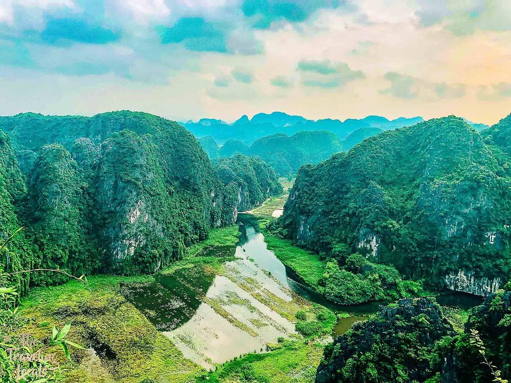 Rice Fields in Nihn Binh Vietnam