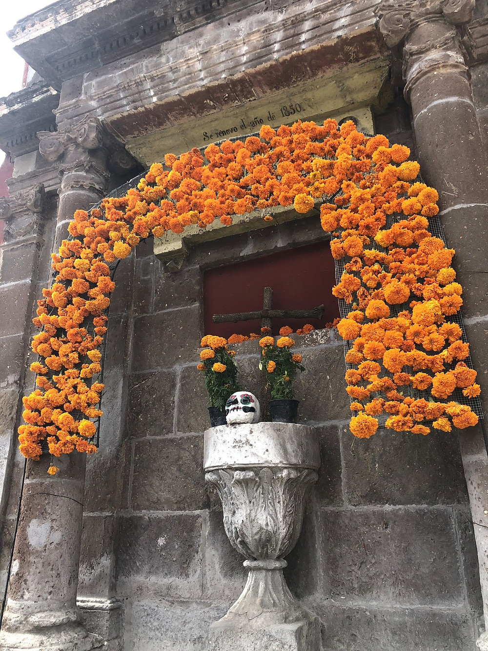 Aztec marigolds decorating an outrdoor alter for day of the dead in San Miguel