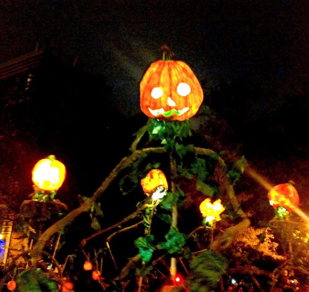 Huge Jack-o-lantern Creatures