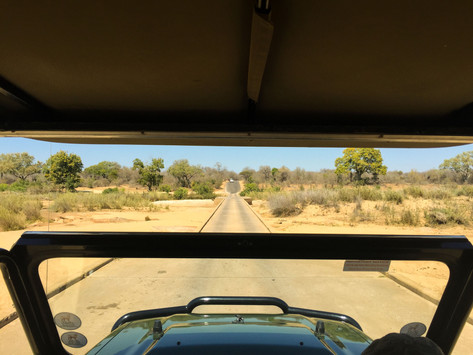 18 Things To Do In South Africa
