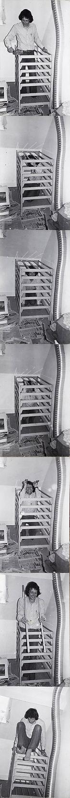 Ours en cage, né à Berne, (dé)construction