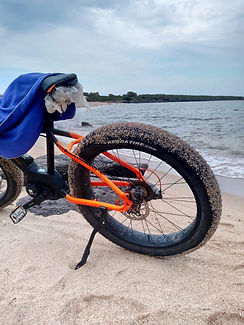 OPES Bike