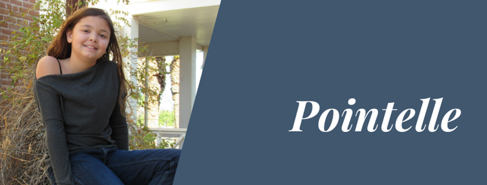 Pointelle Header.png