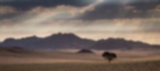 Safari Drive - Daniel Dugmore-1584.jpg