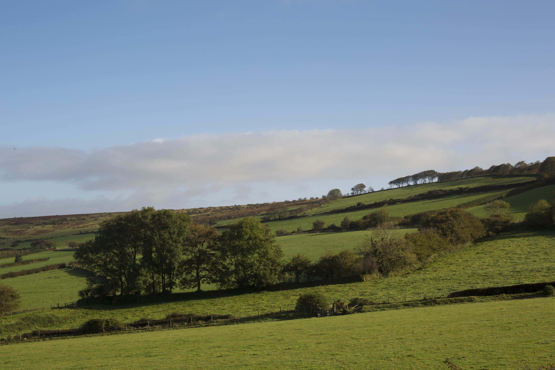 Dartmoor, Devon, England, Landscape