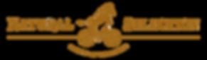 NS logo copy.png