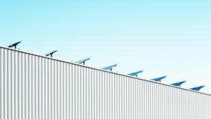Análisis de Ximena Vial: Rentabilidad v/s Sostenibilidad