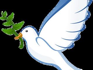 תהליך השלום כבעיה?