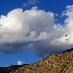 Bo landing in the Foothills