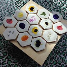 Flower Petal Cookies