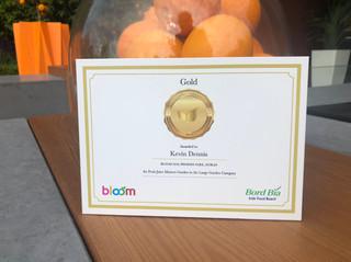 Gold Medal - Bloom 2018