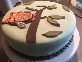 Novelty Cake - €POA