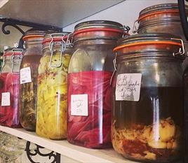 An Introduction to Fermentation