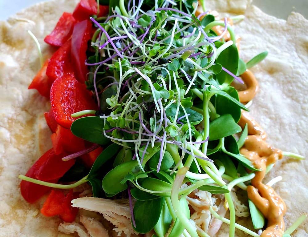 On the grow's Sunflower & Purple Sprouting Broccoli Microgreen taco