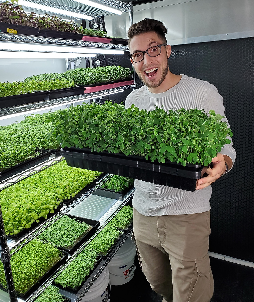 CJ Vaughn of on the grow holding Pea Microgreens in front of our Grow Rack
