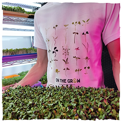 On The Grow - New Merch Photo.png