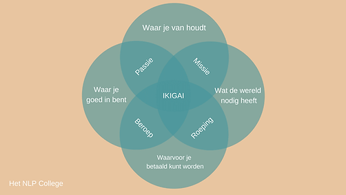ikigai-schema.png