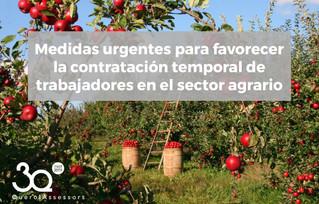 Se favorece la contratación temporal en el sector agrario