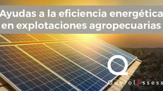 Ayudas a la eficiencia energética en explotaciones agropecuarias