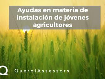 Ayudas para jóvenes agricultores