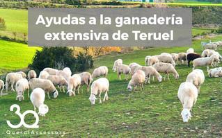 Ayudas a la ganadería extensiva de Teruel