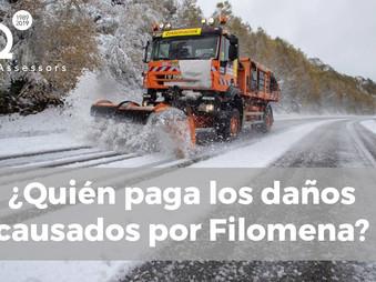 ¿Quién paga los daños causados por Filomena?