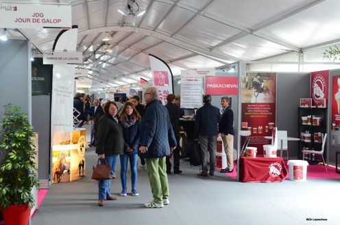 Galop Expo 2016 ©C.Lepescheux