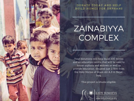 Make a Home for the Orphans of Najaf