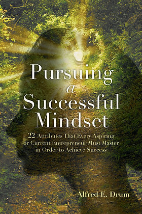 Pursuing A Successful Mindset