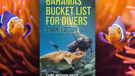 The Bahamas: A Deeper Look with Captain Nathan Riley