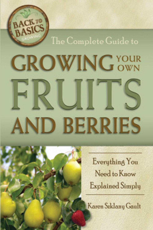 fruits and berries.jpg