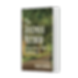 mockup-of-a-customizable-paperback-book-