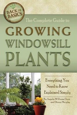 The Complete Guide to Growing Windowsill Plants