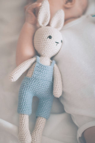 rabbit-amigurumi-doll-2731820_edited.jpg