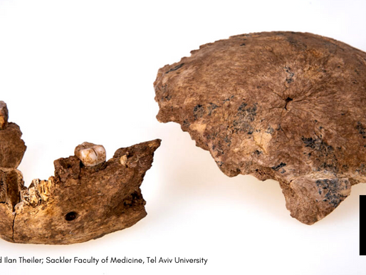 ARCHAEOLOGISTS CLAIM FINDING PREHISTORIC HUMAN IN ISRAEL