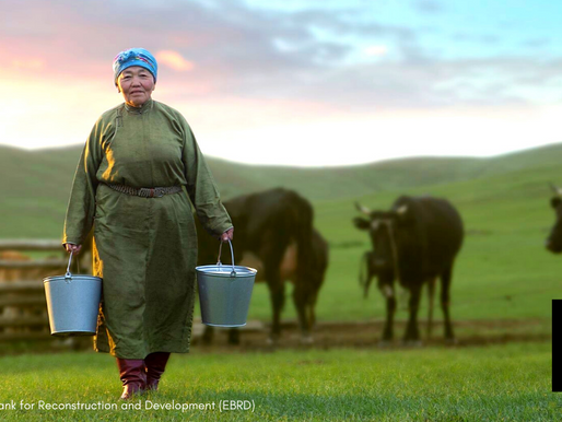 EBRD And XacBank Support Mongolia's Dairy Producer Suu Milk