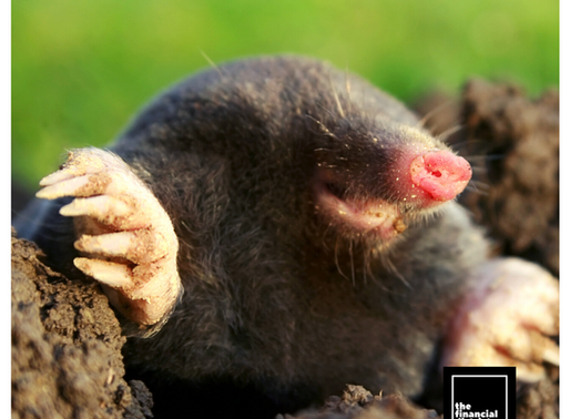 MOLE GENOME REVEALS WHY FEMALES HAVE OVARIES AND TESTICLES