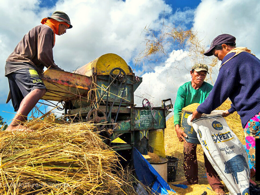 NUEVA ECIJA FARMERS BENEFIT FROM MECHANIZATION PUSH OF DA