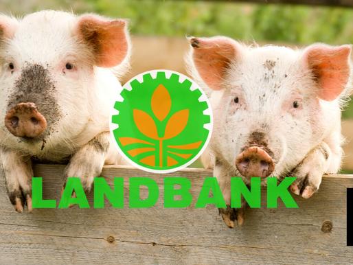 LAND BANK SETS ASIDE P30 BILLION FOR LENDING TO PORK PLAYERS