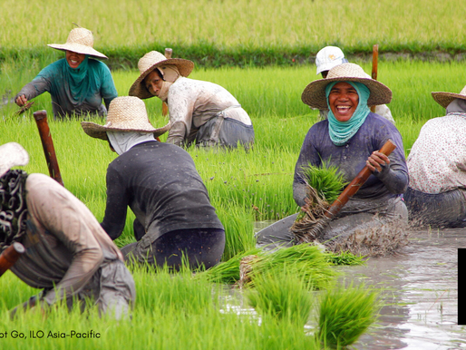 FINANCING ASSISTANCE TO FARMERS SET
