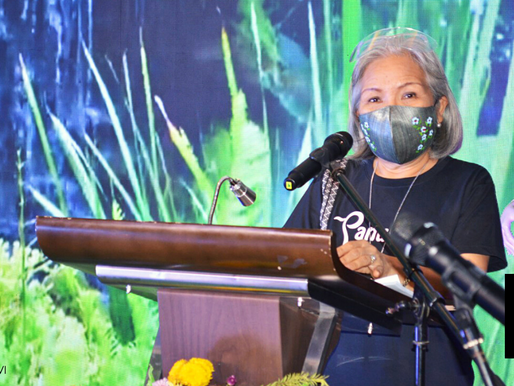 DTI Gives Iloilo Start-Ups Boost With P18M Fund