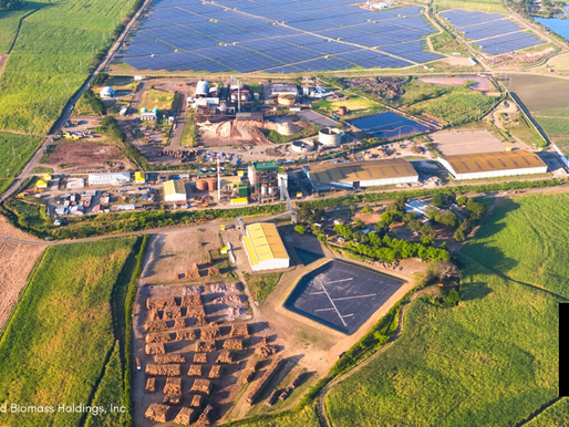 AYALA ENERGY DIVESTS FROM BIOMASS-FIRED POWER PLANTS