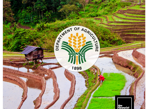 INCREASE IN RICE ADEQUACY TARGETED