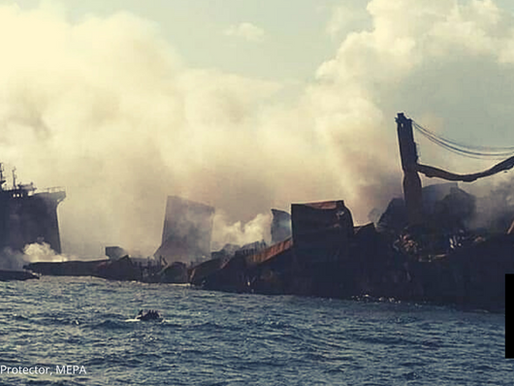 SRI LANKA SEEKS $40M IN DAMAGES OVER SHIP FIRE THAT POLLUTED PORT