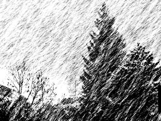 MOTHER NATURE DELIVERS CHRISTMAS SEASON ARCTIC BLAST