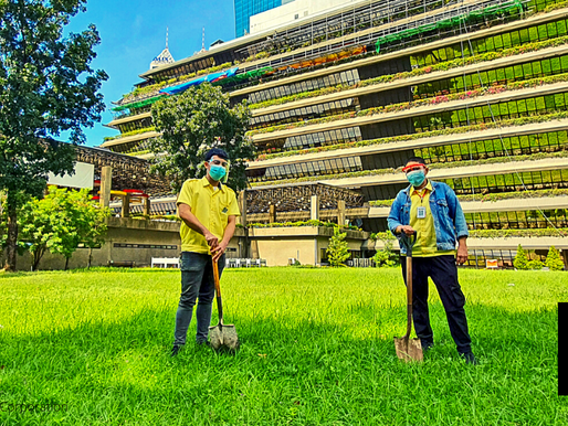 SMC TO CONVERT PORTIONS OF HQ GROUNDS INTO MICRO URBAN FARMS FOR FRESH PRODUCE