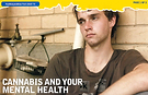 Cannabis and your mental health pic.png